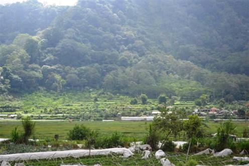 land for sale in Bedugul Tabanan Bali
