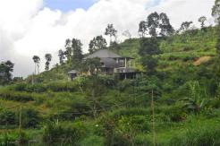 TJTB061 land for sale in Bedugul Tabanan Bali 05