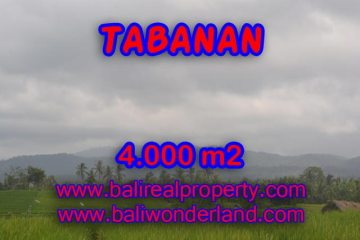 LAND FOR SALE IN TABANAN, Wonderful view in TABANAN BARAT Bali – TJTB084