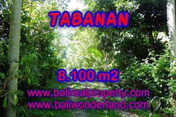Exotic Property for sale in Bali, LAND FOR SALE IN TABANAN Bali – TJTB113