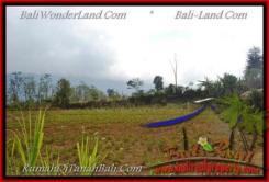 Exotic TABANAN BALI 20,000 m2 LAND FOR SALE TJTB163