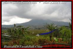 Exotic TABANAN BALI 52,000 m2 LAND FOR SALE TJTB164