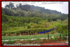 Magnificent 52,000 m2 LAND SALE IN TABANAN BALI TJTB164