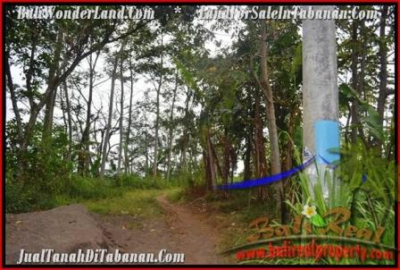 FOR SALE Beautiful PROPERTY LAND IN TABANAN TJTB166