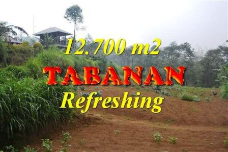 Magnificent PROPERTY LAND SALE IN TABANAN TJTB167