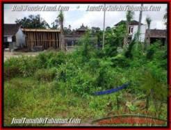 Tabanan City BALI LAND FOR SALE TJTB201