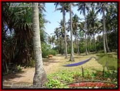 LAND SALE IN Tabanan Selemadeg BALI TJTB158