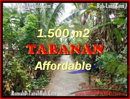 FOR SALE Beautiful 3,000 m2 LAND IN TABANAN BALI TJTB159