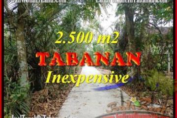 FOR SALE Beautiful 2,500 m2 LAND IN TABANAN BALI TJTB160