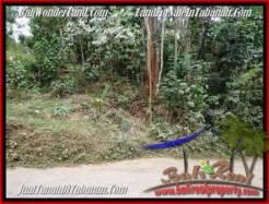Affordable 3,600 m2 LAND IN TABANAN BALI FOR SALE TJTB211