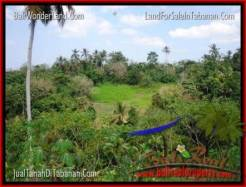 Exotic PROPERTY 3,000 m2 LAND FOR SALE IN Tabanan Selemadeg TJTB205