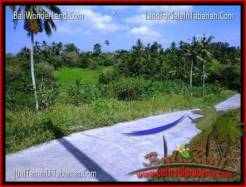 Beautiful PROPERTY Tabanan Selemadeg 3,000 m2 LAND FOR SALE TJTB205