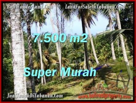 Beautiful PROPERTY Tabanan Selemadeg 7,500 m2 LAND FOR SALE TJTB207