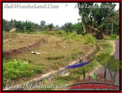 Tabanan Selemadeg BALI LAND FOR SALE TJTB208