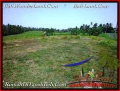 Beautiful LAND FOR SALE IN TABANAN TJTB208