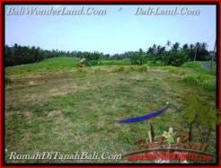 Beautiful LAND FOR SALE IN TABANAN TJTB208