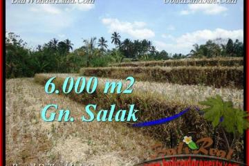 Beautiful PROPERTY LAND IN TABANAN FOR SALE TJTB221
