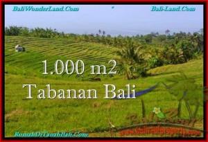 Exotic PROPERTY 1,000 m2 LAND SALE IN TABANAN BALI TJTB237