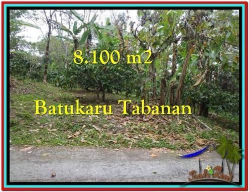 Beautiful PROPERTY 8.100 m2 LAND SALE IN Tabanan Penebel TJTB212