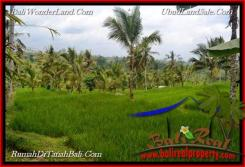 Beautiful LAND IN TABANAN FOR SALE TJTB216