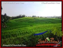 Affordable PROPERTY TABANAN LAND FOR SALE TJTB217