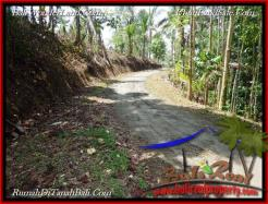 Magnificent PROPERTY Tabanan Selemadeg 6,000 m2 LAND FOR SALE TJTB221