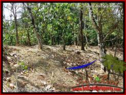 3,100 m2 LAND IN TABANAN BALI FOR SALE TJTB222