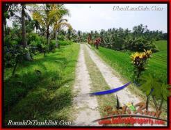 Affordable PROPERTY TABANAN LAND FOR SALE TJTB223