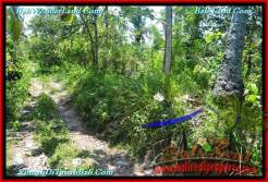 18,500 m2 LAND IN TABANAN BALI FOR SALE TJTB232