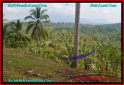 LAND SALE IN Tabanan Selemadeg BALI TJTB238