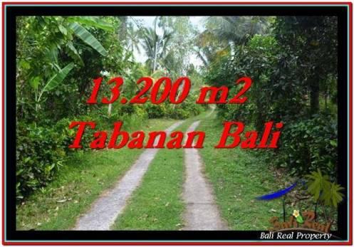 Magnificent PROPERTY Tabanan Selemadeg 13,200 m2 LAND FOR SALE TJTB255
