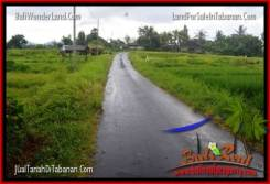 Beautiful PROPERTY 2,200 m2 LAND SALE IN Tabanan Selemadeg TJTB269