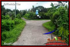 Exotic PROPERTY Tabanan Selemadeg 8,000 m2 LAND FOR SALE TJTB287