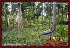 Magnificent PROPERTY Tabanan Penebel 1,500 m2 LAND FOR SALE TJTB279