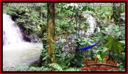 Magnificent LAND SALE IN Tabanan Selemadeg BALI TJTB283