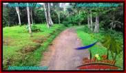 Exotic LAND FOR SALE IN TABANAN TJTB274
