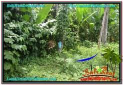 FOR SALE Exotic LAND IN Tabanan Kerambitan BALI TJTB297