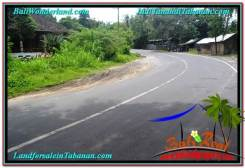 Magnificent TABANAN BALI 2,700 m2 LAND FOR SALE TJTB299