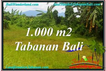 Exotic PROPERTY 1,000 m2 LAND IN Tabanan Selemadeg FOR SALE TJTB311