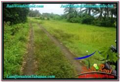 Exotic PROPERTY 1,000 m2 LAND IN Tabanan Selemadeg FOR SALE TJTB311