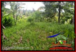 Exotic PROPERTY TABANAN BALI LAND FOR SALE TJTB315