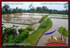 FOR SALE Affordable LAND IN Tabanan Penebel BALI TJTB316