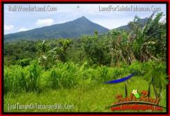 Exotic 150,000 m2 LAND IN Tabanan Penebel FOR SALE TJTB318