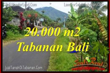 Affordable PROPERTY 20,000 m2 LAND FOR SALE IN Tabanan Penebel BALI TJTB315