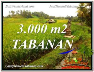 Exotic 3,000 m2 LAND SALE IN TABANAN BALI TJTB328
