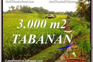 Exotic 3,000 m2 LAND SALE IN TABANAN BALI TJTB328