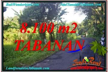 Magnificent Tabanan Marga LAND FOR SALE TJTB329