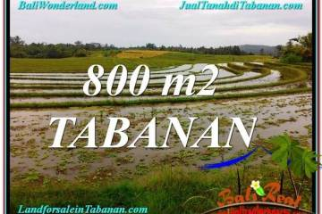 Affordable 800 m2 LAND FOR SALE IN TABANAN TJTB324