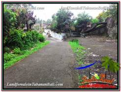 Exotic PROPERTY LAND FOR SALE IN TABANAN BALI TJTB333