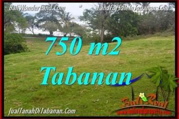 FOR SALE 750 m2 LAND IN TABANAN TJTB346